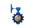Lug type worm gear butterfly valves